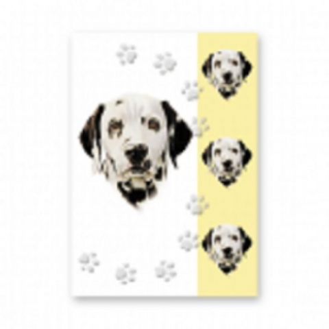 DALMATION GREETINGS CARD